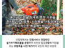 <적극행정 우수사례> 국민 행복을 위한 산림청 적극행정 이야기