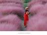 경북 칠곡인물3부/ 한박자 쉬다갈까.......가산 수피아 분홍물결속으로