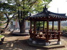 고성 가볼만한 곳-고성 개천초교 아름드리나무들